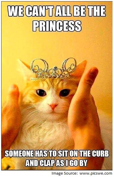 pic-CatPrincess