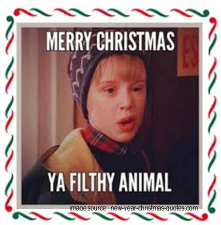pic-Merry Christmas Filthy Animal